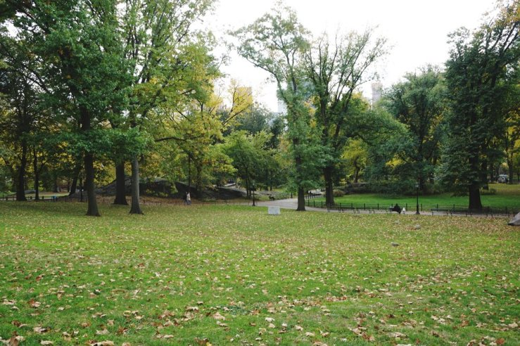 Wish we could have spent more time in Central Park but it's huuuge. Autumn is so, so beautiful here.