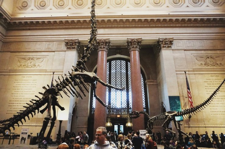 The Museum of Natural History was such a good time. One of Jay and I's favorites. You could easily spend the whole day exploring this place. Entry fees are donation based so you can feel like Ben Stiller in Night at the Museum fo' free.